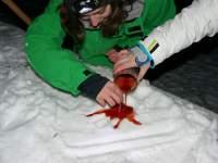 Kerzen-Giessen im Schnee
